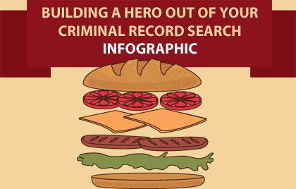 criminal record search